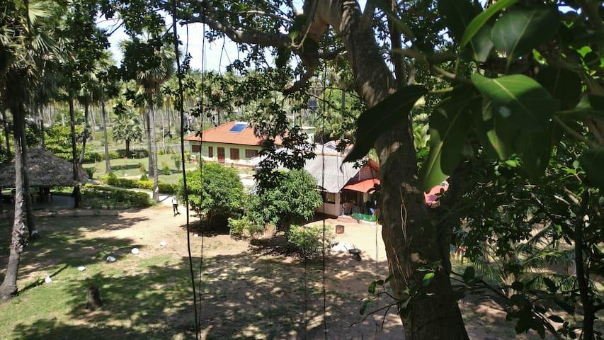 Brindhavan Cottage 7 - Nilaveli - Hus