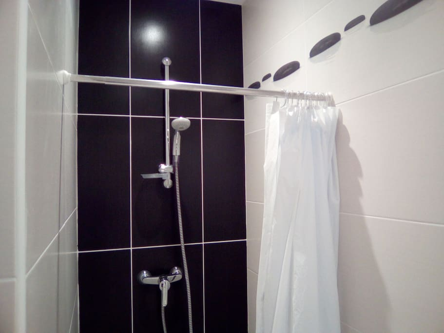 salle de bain type douche avec wc