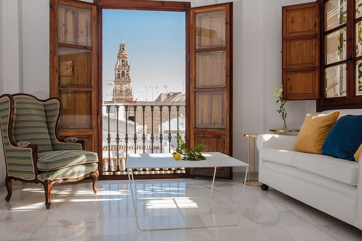 Luxury attic with a view of the Mezquita