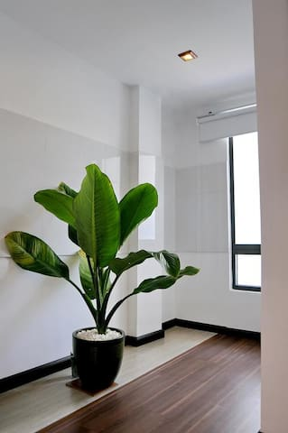 Left the apartment