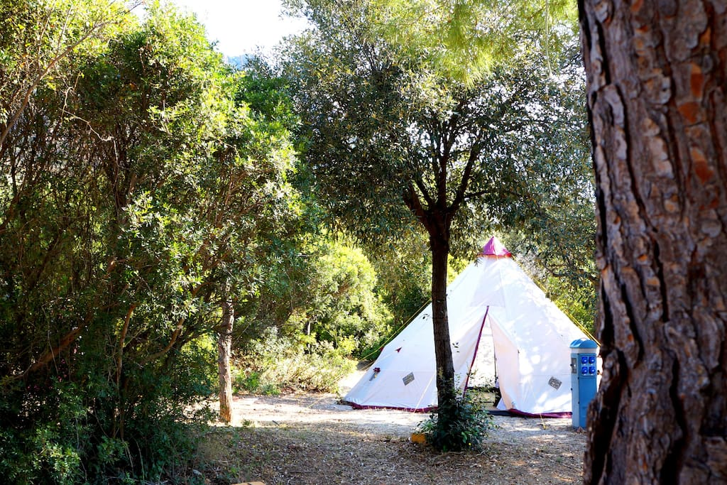 tenda immersa nella vegetazione sarda