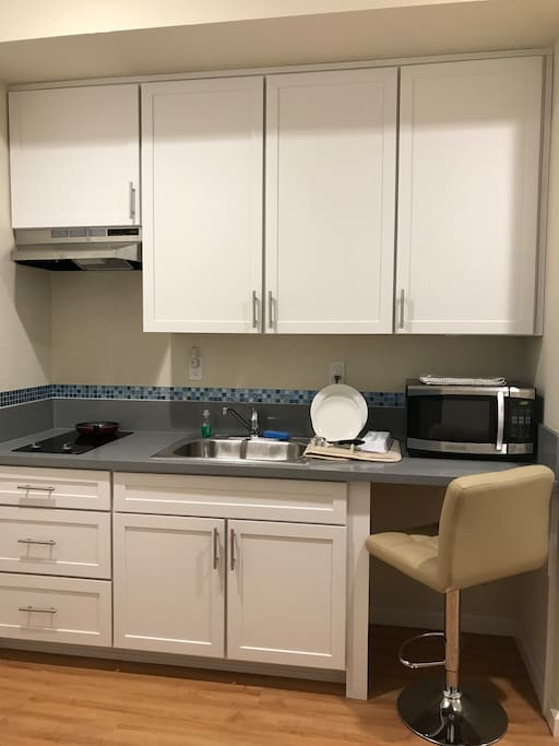 Private kitchenette with two-top burner, microwave, and full-size refrigerator in the garage
