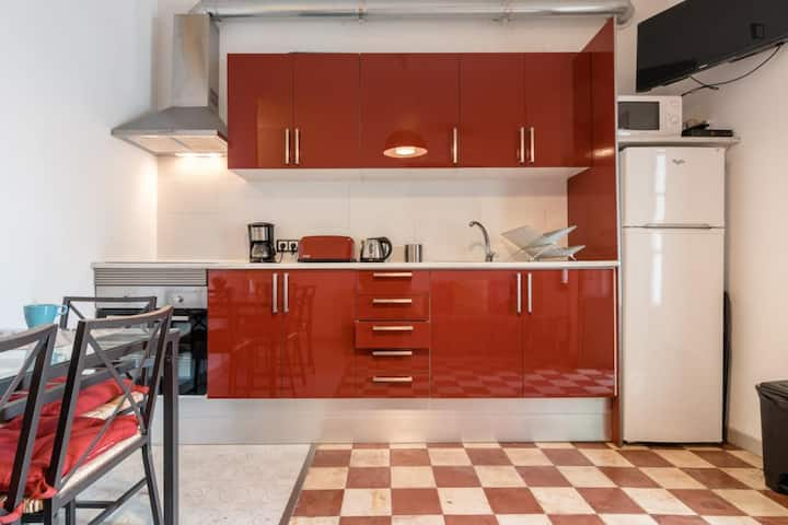Big well equipped apartment in city centre.