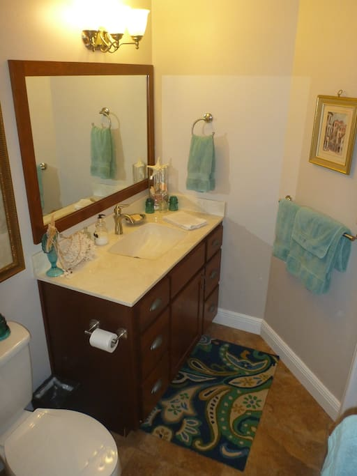 Private shower/tub and a generous vanity.