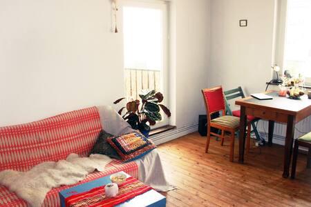 Beautiful flat, close to centre, Flüsseviertel - Bremen