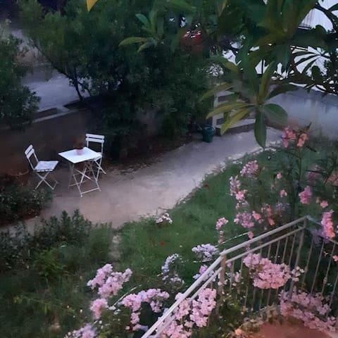 la casa di Franca tra fiori e mandarini