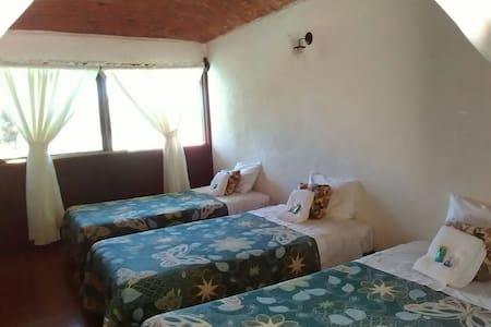 *family Hostal Pahpaqui - Tequisquiapan - Bed & Breakfast