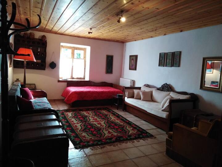 Dimitsana - House 1