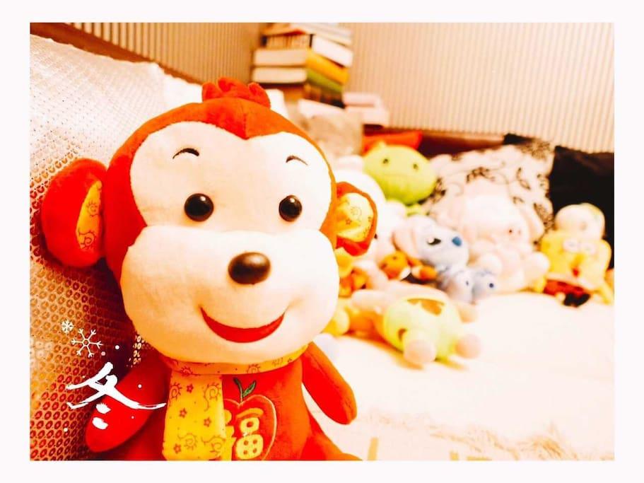 房东家有很多温馨的公仔娃娃