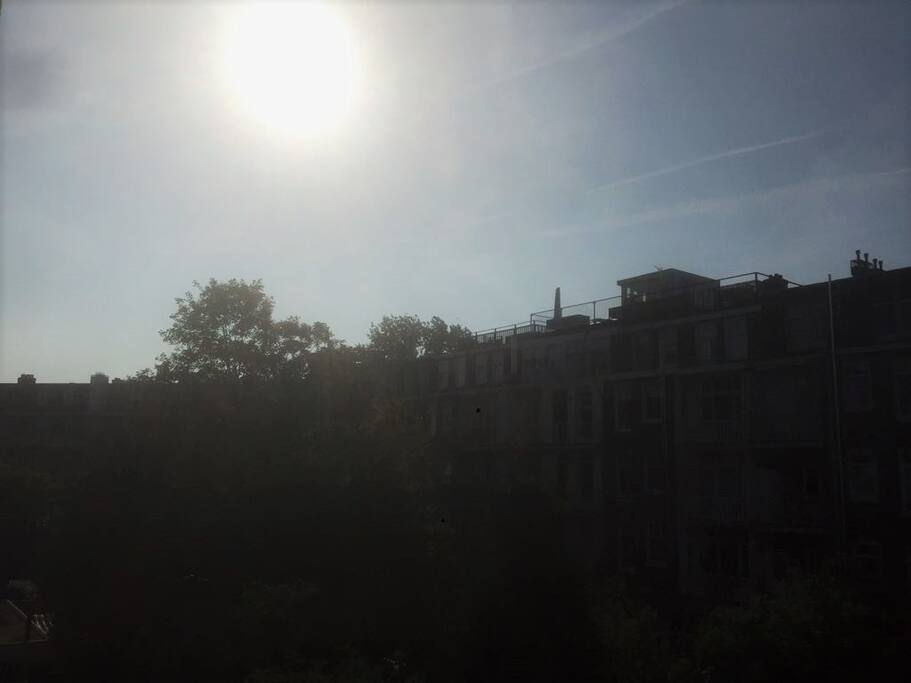 Sunny Amsterdam!
