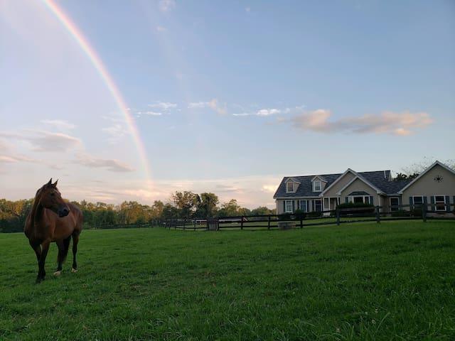 Wine/Horse Country Getaway