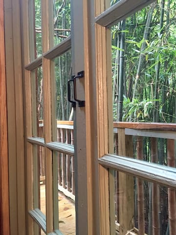 French doors looking out to bamboo