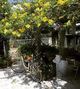 Malee Berkban in Phayao