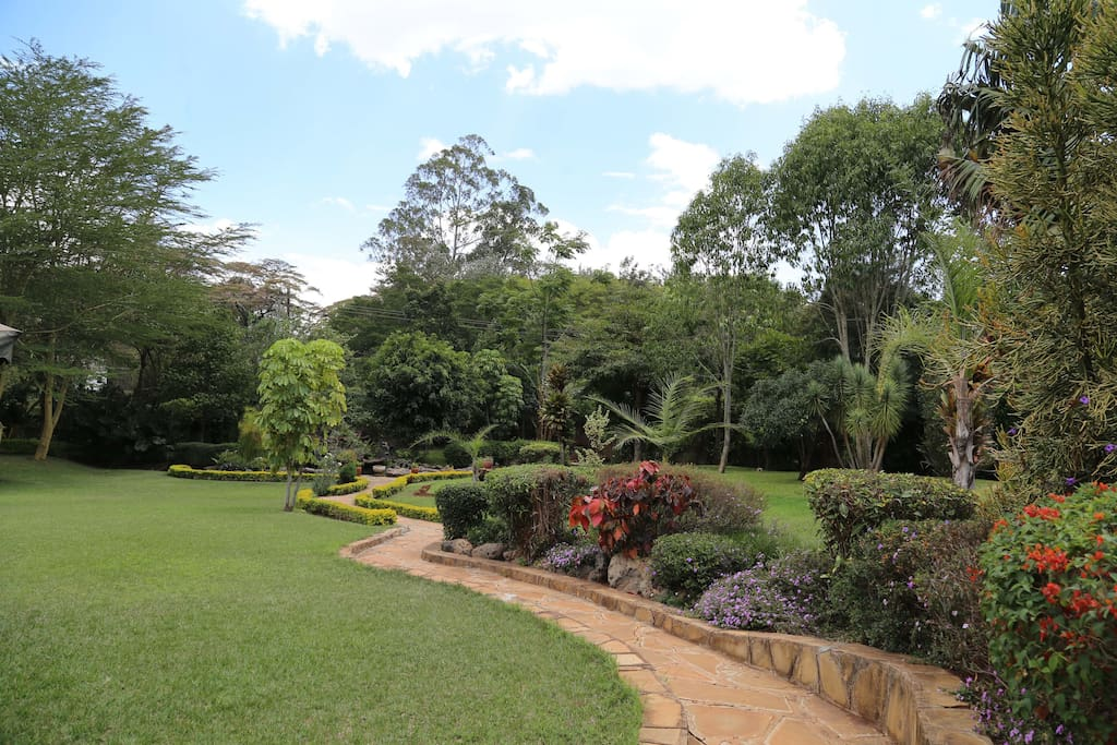 Beautiful garden path leading to running waterfall and pond