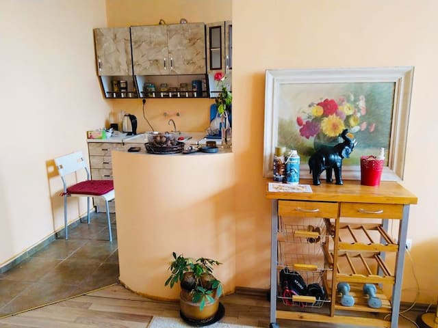 Cozy small entire place in Mladost 3,close2Airport