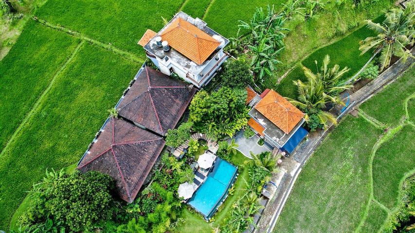 Tini Villa Superior King - Room 5 - Tegallalang - Casa