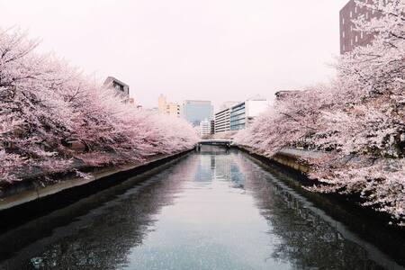Lovely old house, on river w cherry blossom! 2F S - Kōtō-ku - House