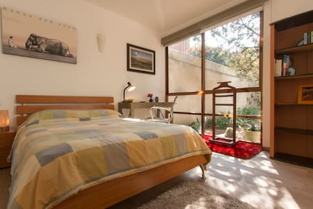 Lovely studio in colonial San Angel