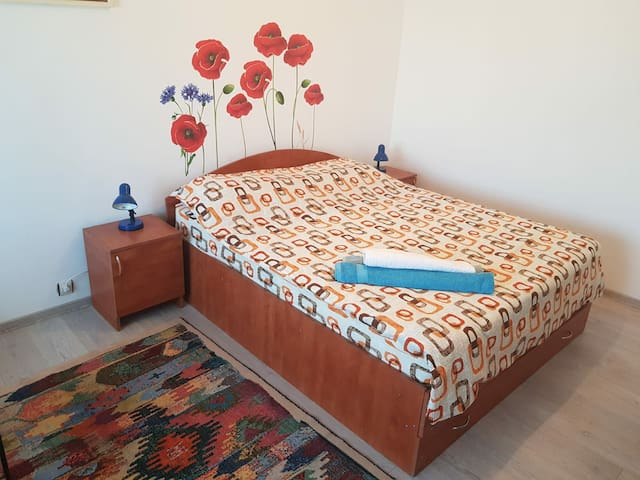Zamfi Apartment Deva