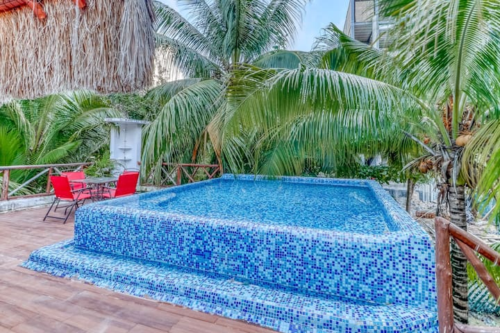 Dog-friendly home w/ rooftop pool, terrace & jungle view - 500 feet to beach!
