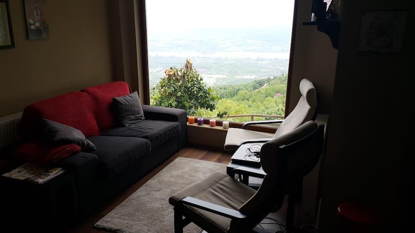 Mountain Villa in Sapanca Nature - Sapanca Dağ Evi
