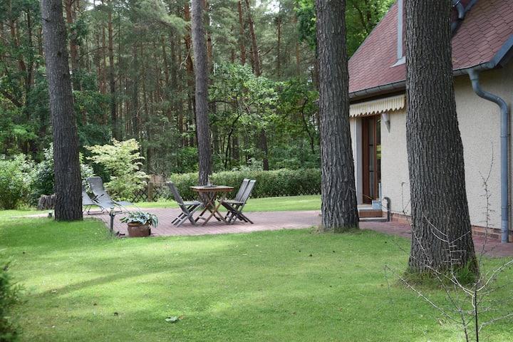 idyllisches Ferienhaus mit Waldblick und Garten