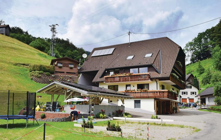 Holiday apartment with 1 bedroom on 50 m² in B. Peterstal-Griesbach