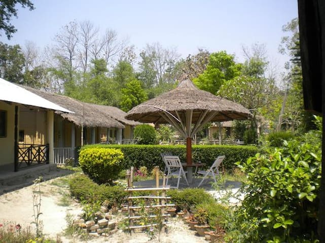 Beautiful garden with tea place in-front of room