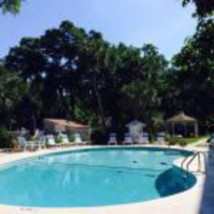 back swimming pool area
