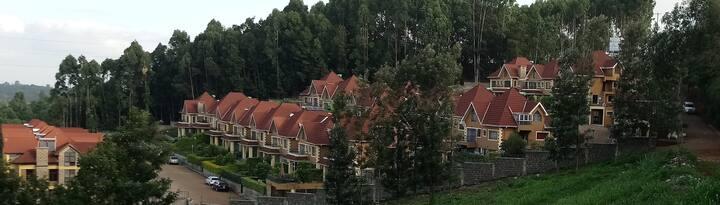 Sankofa Nyumbani