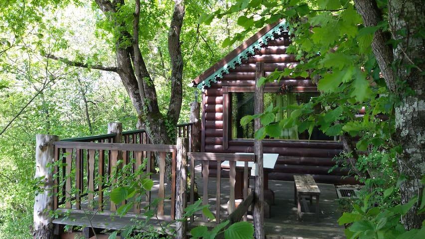 Cabane  A Cachou , cachée par les arbres sa terrasse avec vue des Pyrénées, est traversée par un chêne.