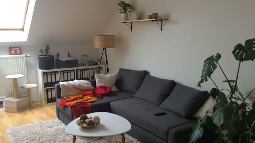 Gemütliche Maisonette DG Wohnung - Chemnitz - Apartment