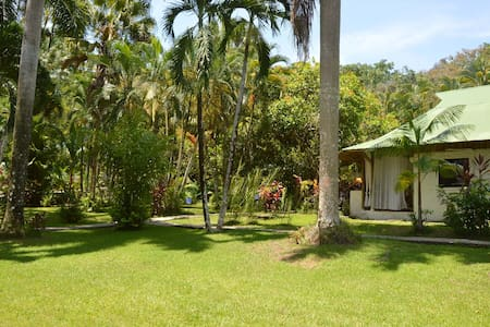 A Suite for 4 in Nature, walk to Dominical - Dominical