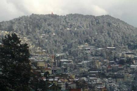 The Thistle Lodge - Shimla