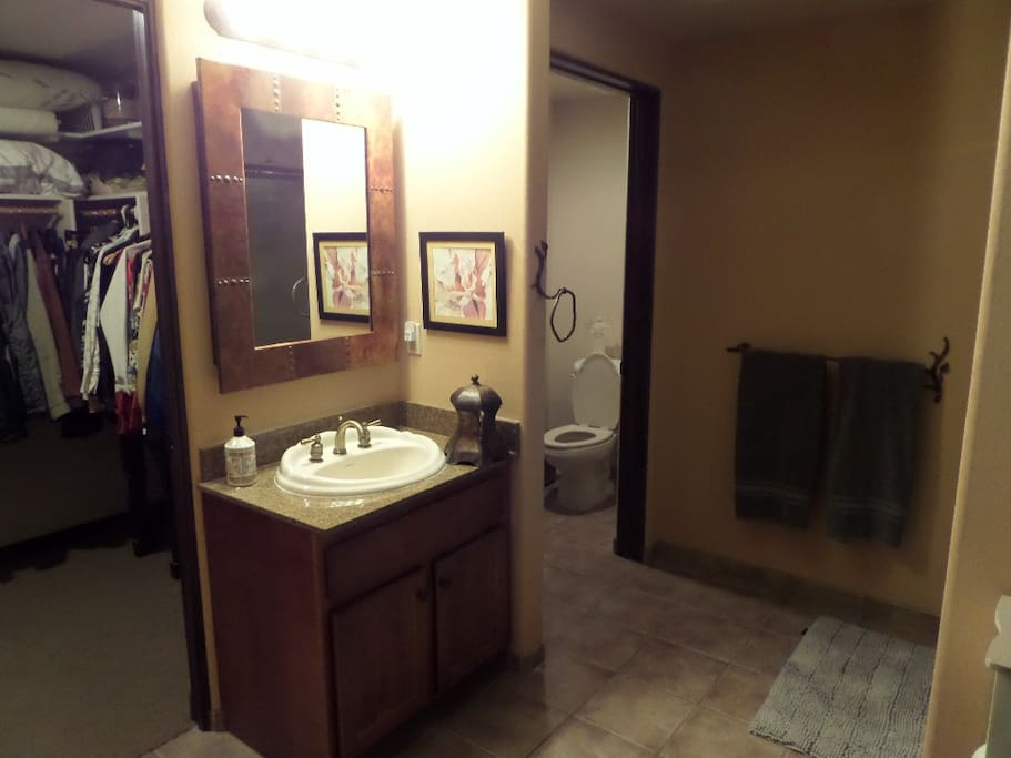 Junior suite bathroom with shower and tub. Walk in closet.
