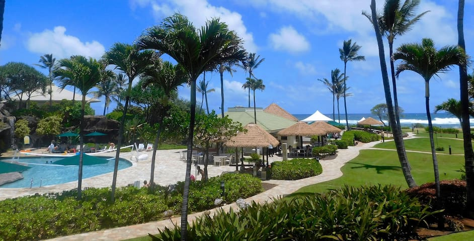 KAUAI BEACH RESORT. OCEAN AND POOL VIEW!!!