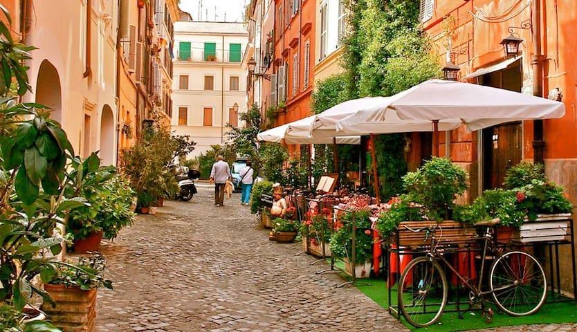 MySuiteInRome - Trastevere Botanical Garden Suite.