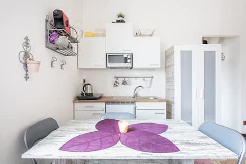 ARYA VENICE*  Studio apartment