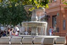 Fountain on the Novi Trg / square