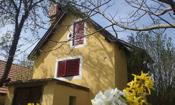 SHANTI Guest house in Hegymagas (double apartment)