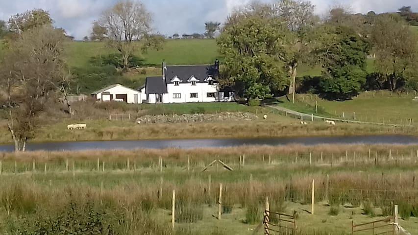 Tyngaer Farmhouse - Ceredigion - House