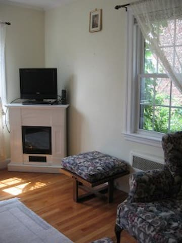 Luxurious - Walkable to Harvard Full 1bdrm + sofa