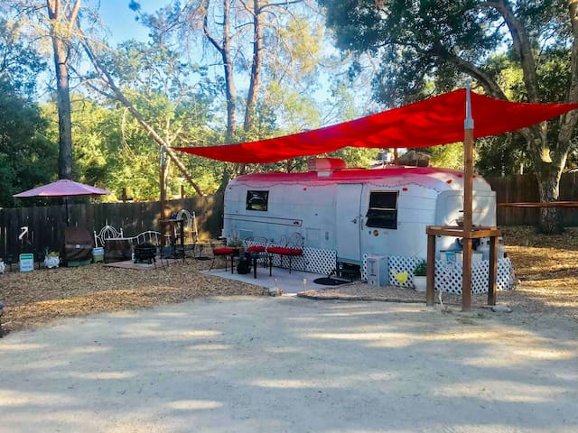 Glamping amongst the oaks with views of the stars