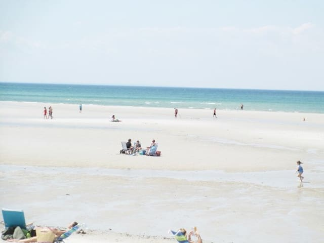 Mayflower beach at low tide