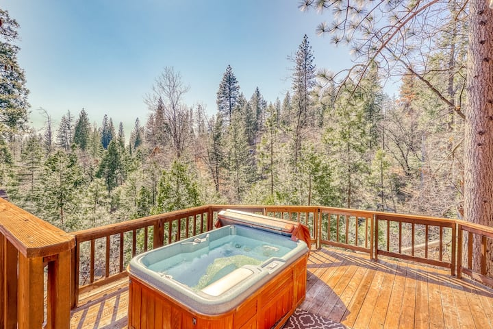 Serene forest setting on half an acre w/ private hot tub - dogs welcome!