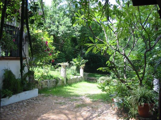 CASA ZOMPANTLE Enjoyable Peaceful Garden Setting - Oaxaca - Haus