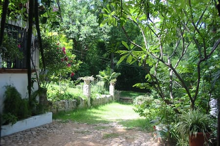CASA ZOMPANTLE Enjoyable Peaceful Garden Setting - Oaxaca - Rumah