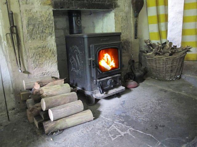 Morso Squirrel stove in main room