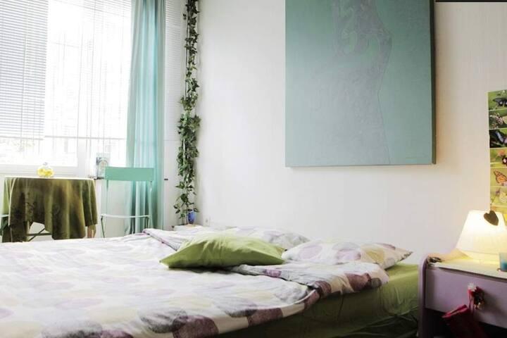 MAISON PAPILLON chambre verte