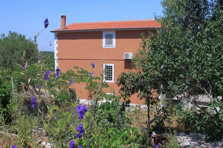 One bedroom apartment with air-conditioning Žman (Dugi otok) (A-8133-b)